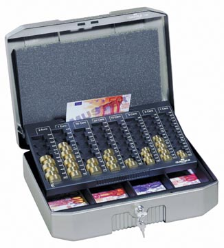 Durable coffret à monnaie Euroboxx, ft 12 x 35,2 x 27,6 cm