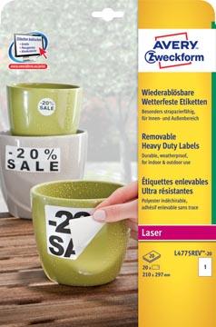 Avery étiquettes enlevables résistantes à l'humidité Ft 210 x 297 mm (l x h), blanc boîte de 20 pièces